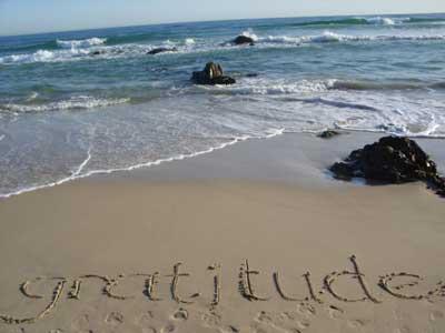 Practice an Attitude of Gratitude