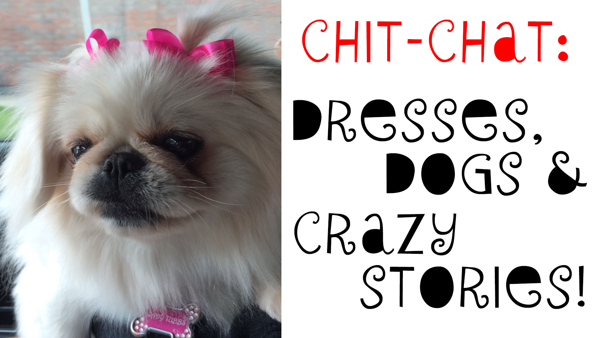 Chit-Chat: Dresses, Dogs & Crazy Stories!